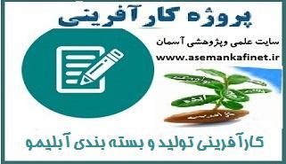 6 - طرح کارآفرینی تولید و بسته بندی آبلیمو