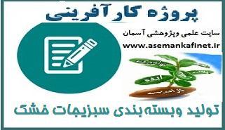 15 - طرح کارآفرینی تولید وبستهبندی سبزیجات خشک